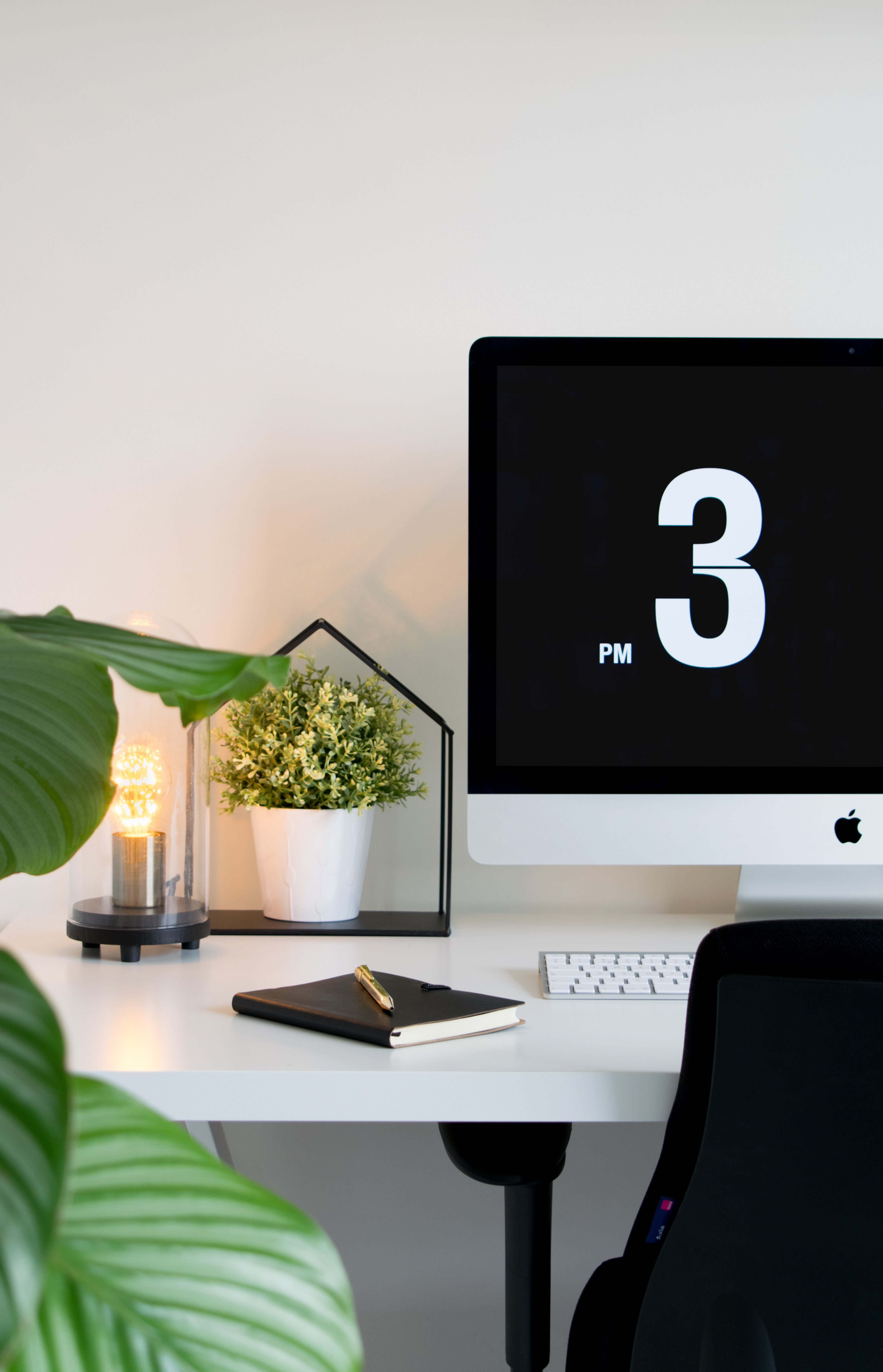 Clean table, plant and good lighting are components of a good Feng Shui office.